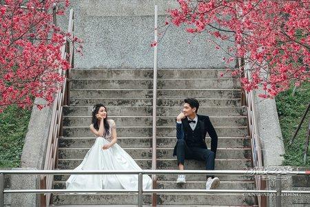 客照|Cang-Ai Wedding|春季櫻花