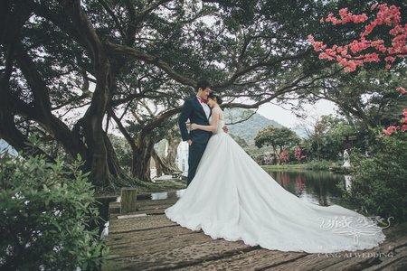 客照|Cang-Ai Wedding|森林、童話