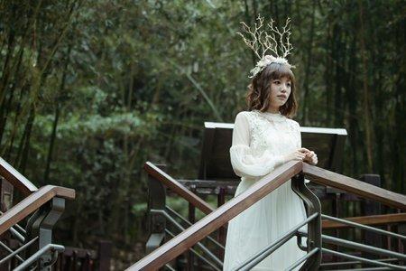 Shan|作品集|森林