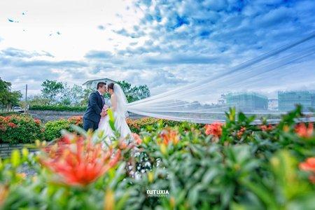 【宜蘭婚攝】文志&芝安 文定迎娶紀錄 @羅東-渡小月宴客