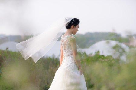 婚禮故事精選(不定期更新)