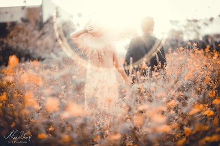 |PRE-WEDDING|浪漫夕陽