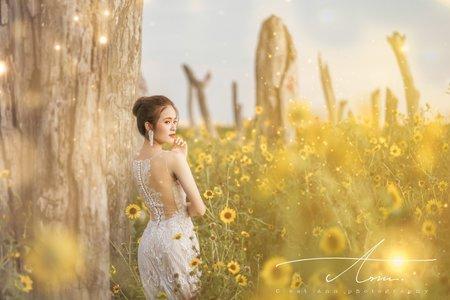 個人寫真|韓系婚紗唯美夢幻
