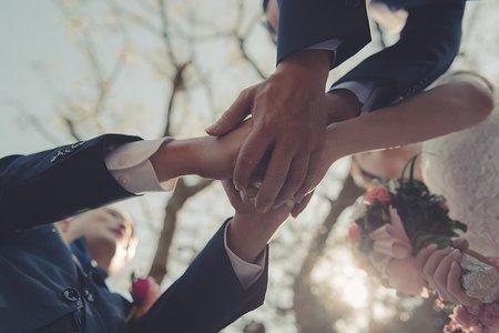 真愛桃花源 Wedding
