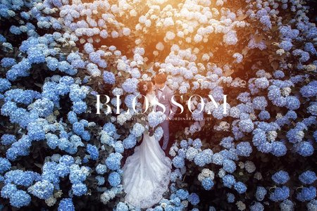 繡球花(浪漫花季)/水花婚紗攝影工作室 Blossom Photoart Studio