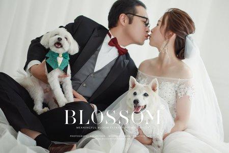 毛小孩寵愛系列(好拍市集)/水花婚紗攝影工作室 Blossom Photoart Studio