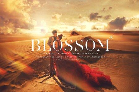 古老的琥珀金(雜誌婚紗)/水花婚紗攝影工作室 Blossom Photoart Studio
