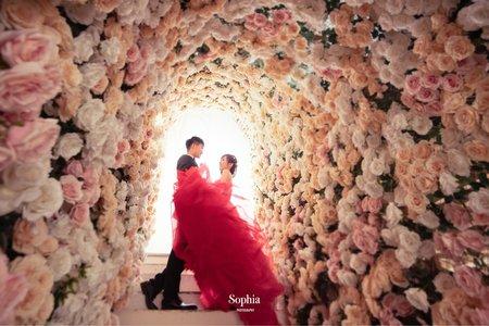 薔薇色的夢|蘇菲雅婚紗攝影|A52