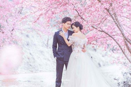 櫻花相印在心上|蘇菲雅婚紗攝影 | B21