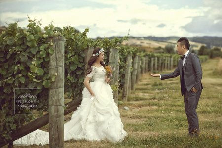 紐西蘭-葡萄園拍婚紗-美式、韓系、日系、清新、時尚、個性、中式精選婚紗風格