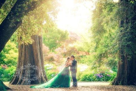 紐西蘭基督城植物園拍婚紗-美式、韓系、日系、清新、時尚、個性、中式精選婚紗風格