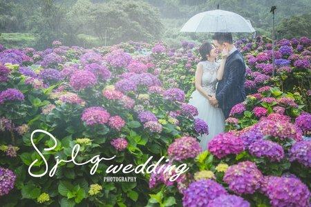 視覺流感|自然清新 │ 浪漫甜美 精選婚紗