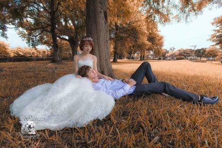 外拍婚紗甜美風格