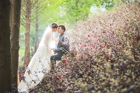 德偉❤️致芸 | 婚紗照 | 浪漫幸福影像婚紗 | 愛麗絲的天空