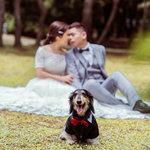 風華絕色 § 完美婚事-婚紗攝影,風華絕色很棒很棒真滴棒